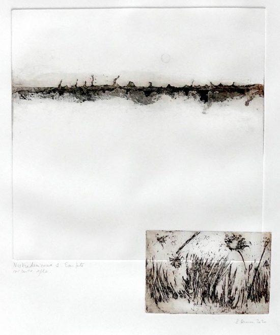 nostradamiennes 1 Sylvie Donaire 40x50cm avec papier 35×40 sans papier Site